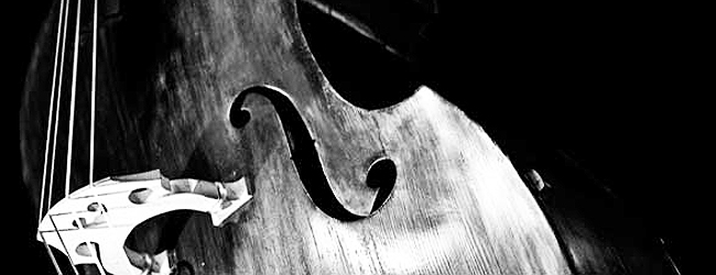 Getting Started with the Double Bass - QUANTUM BASS CENTER
